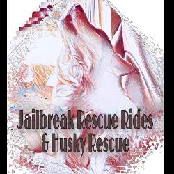 Jailbreak Husky Rescue