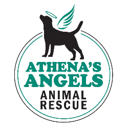 Athena's Angels Rescue