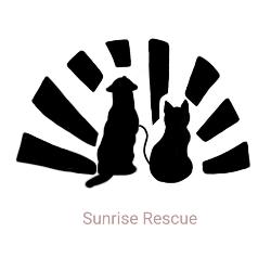 Sunrise Rescue