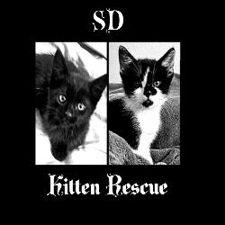 SD Kitten Rescue