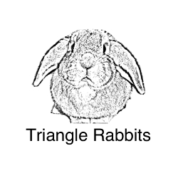 Triangle Rabbits LLC