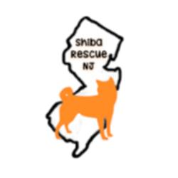 Shiba Rescue of New Jersey