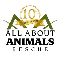 All About Animals Rescue