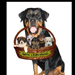 Rotts 'n Pups Rescue Inc