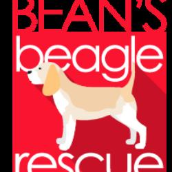 Bean's Beagles, Inc.
