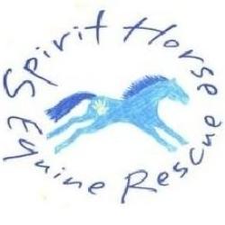 Spirit Horse Equine Rescue & Education Center