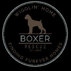 Wigglin Home Boxer Rescue