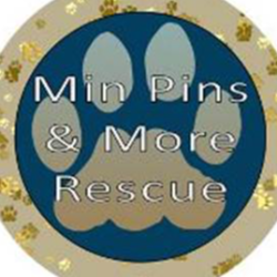 Min Pins & More Rescue Inc