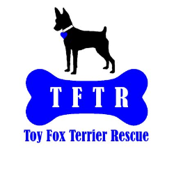 Toy Fox Terrier Rescue, Inc.