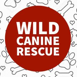 WILD Canine Rescue