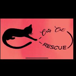 Cris Cat Rescue