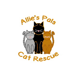 Allie's Pals Cat Rescue