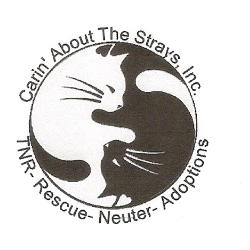 Carin' About The Strays, Inc.