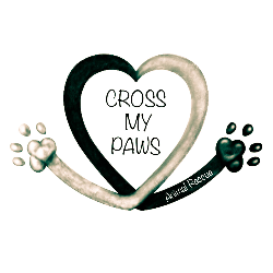 Cross My Paws Animal Rescue